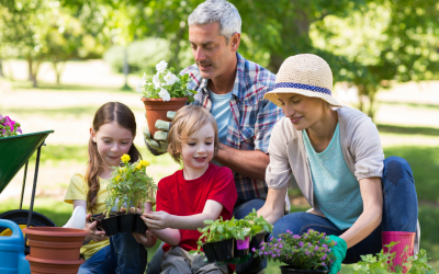 5 Ideas For Fun Family Time